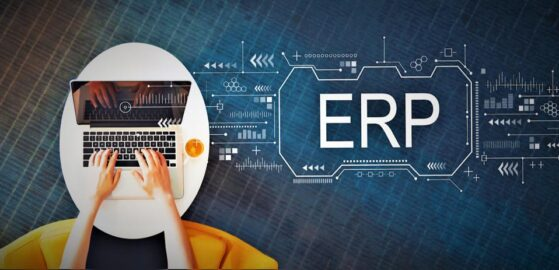 Overseeing Change in a Kingdee Software ERP Implementation
